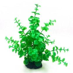 Plastväxt Limnobium 19 cm
