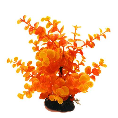 Plastväxt Limnobium orange 19 cm