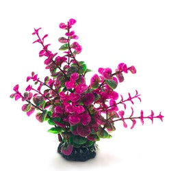 Plastväxt Limnobium grön / lila 19 cm