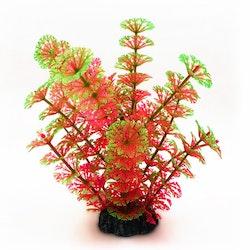 Plastväxt Cabomba rosa med grön topp 19 cm