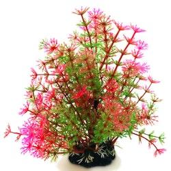 Plastväxt Hottonia rosa / gröna detaljer 19 cm