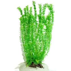 Plastväxt Rotala bonsai grön 40 cm