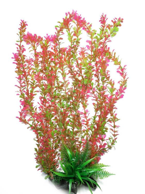 Plastväxt Rotala bonsai grön / röd 55 cm