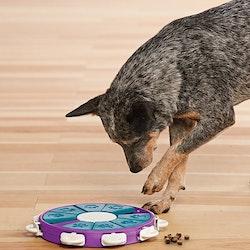 Dog Twister Nina Ottosson (LEVEL 3)