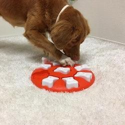 Dog Smart Nina Ottosson (LEVEL 1)