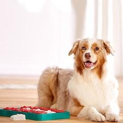 Dog Brick Nina Ottosson (LEVEL 2)
