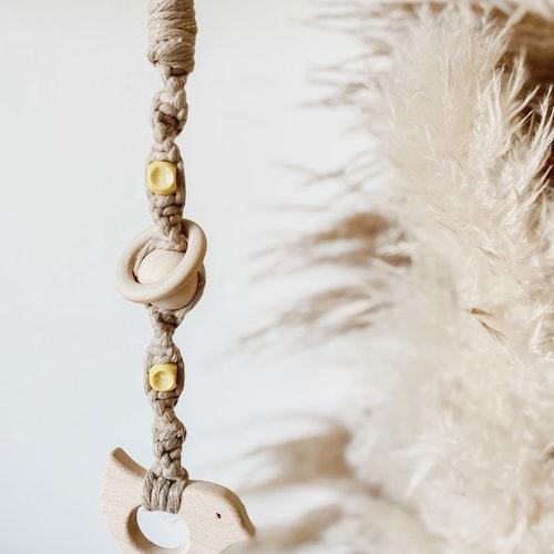 Golden babygym bird