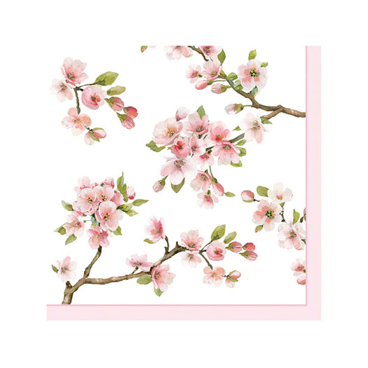 Servetter Sakura