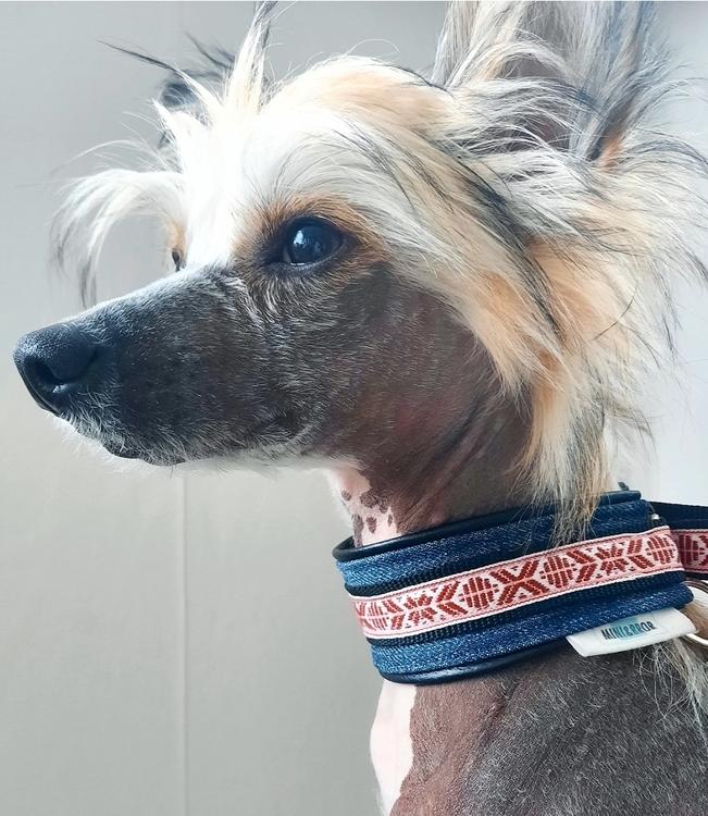 Mini&Bror närproducerade hundhalsband LINGON