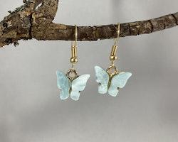 Fjärilar turkos