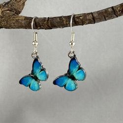 Fjärilar blå