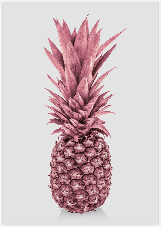 Totally Pink Pineapple