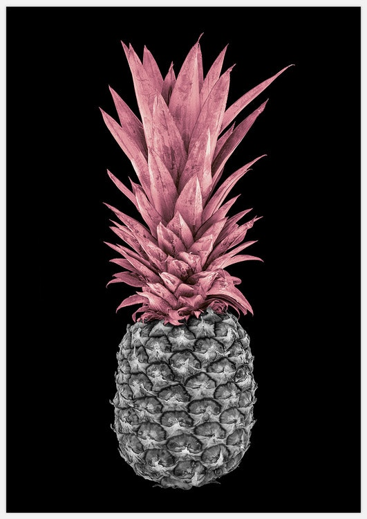 Pink Pineapple on black