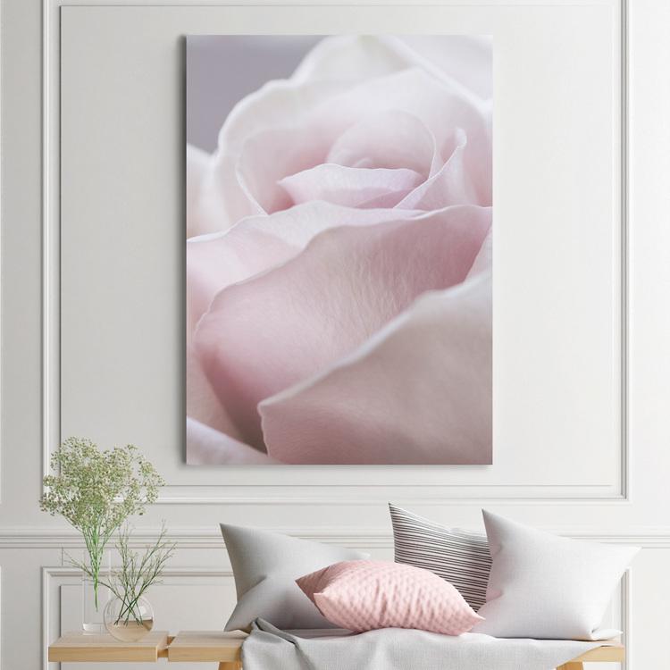 Gorgeous Rose Canvas
