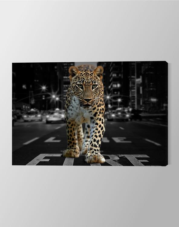 City Leopard Canvas