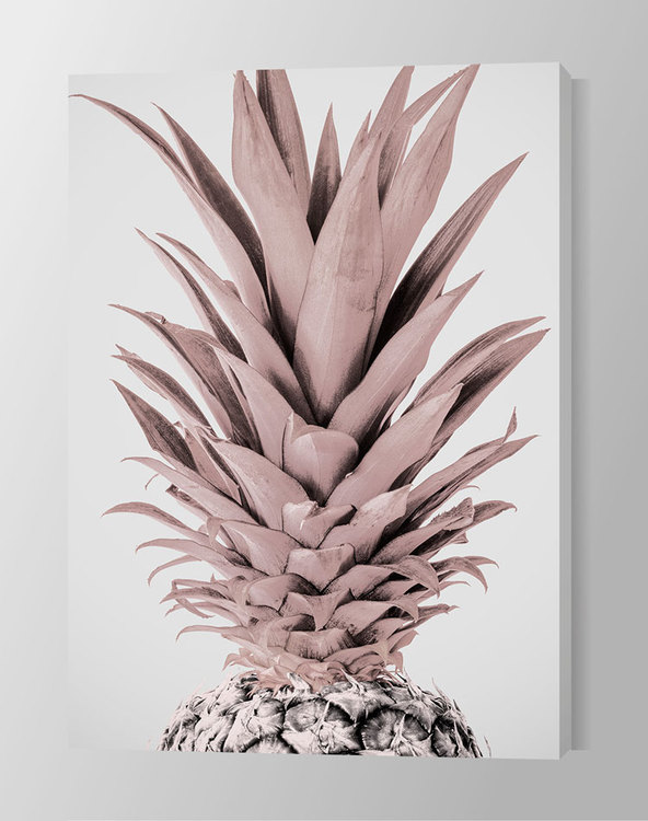 Light Pink Pineapple Canvas