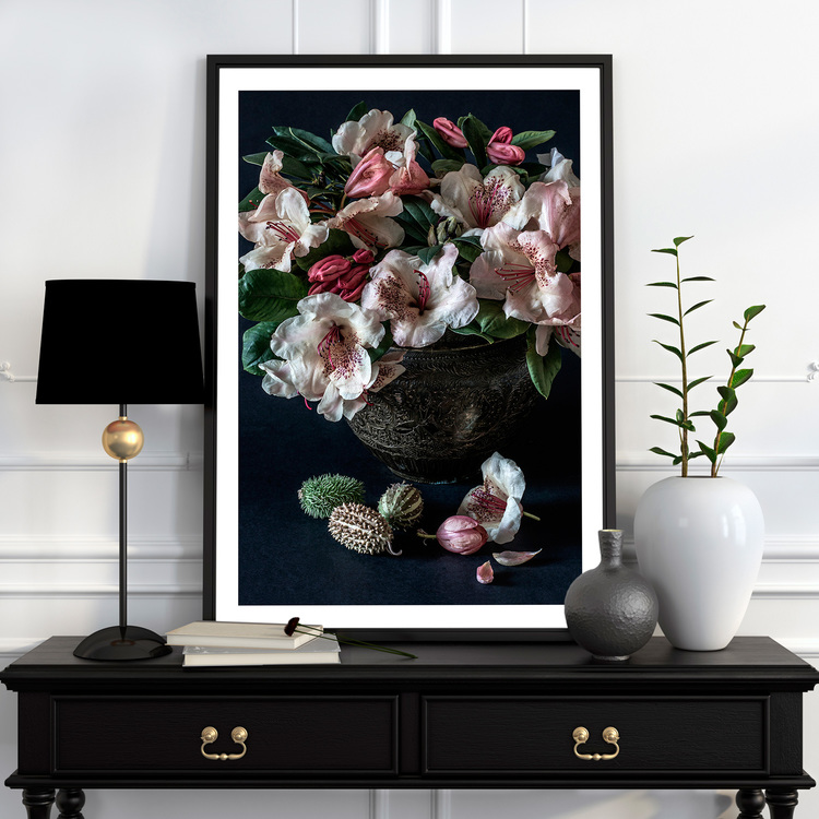 Rhododendron Wardii