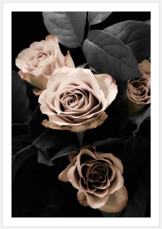 Tavelvägg Classical Roses