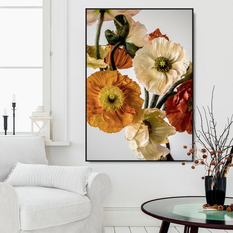 Light-coloured Poppies 2