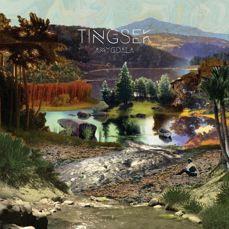 Tingsek - Amygdala (CD)