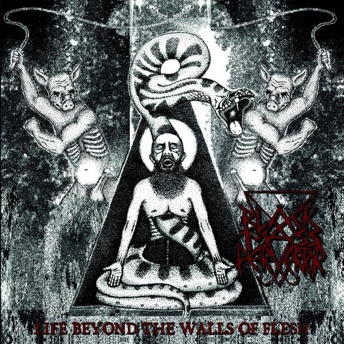 "Black Mass Pervertor - Life Beyond the Walls of Flesh (Mini-LP 12"" Ltd)"