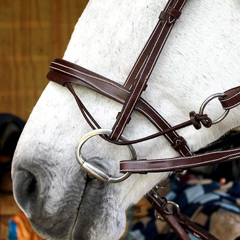Silver Crown Valla bridle träns full