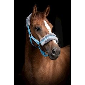 Grimma Horse Unique medelhavsblå/grå