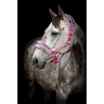 Grimma Horse Unique cerise