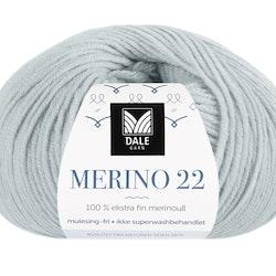 Merino 22