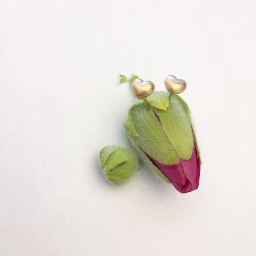 Tiny heart örhängen