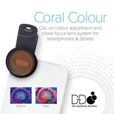 D&D Coral Colour Lens 2nd gen