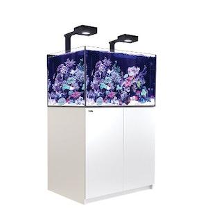 Red Sea Reefer XL 300 med belysing 2 st Hydra 32 HD