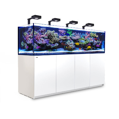 Red Sea Reefer 3XL 900 med belysning 4 st Hydra 32 HD+4st arm