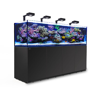 Red Sea Reefer 3XL 900 med belysning 4 st Hydra 32 HD
