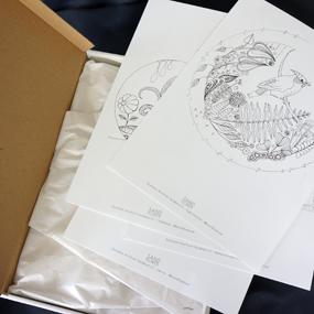 ERBJUDANDE Dubbelpaket- Målarbok för vuxna  - 2 samlingar att rama in / färglägga - En annorlunda värld