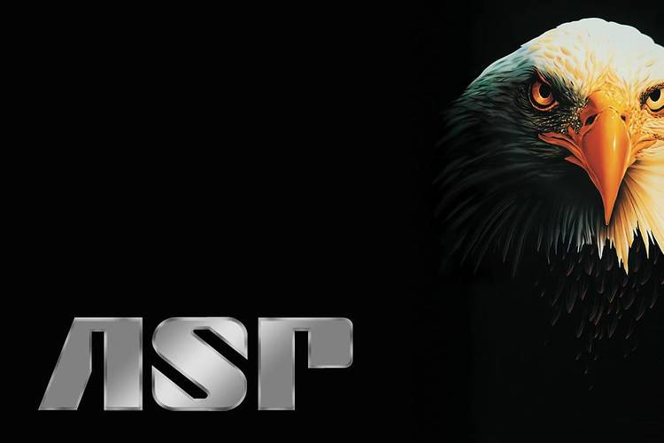 ASP Envoy T50 Black Scabbard Batonghölster