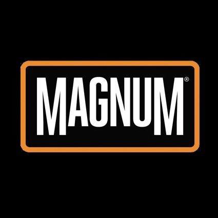 MAGNUM DUTY CT Skyddssko