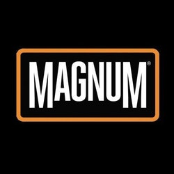 MAGNUM STORM TRAIL LITE - Taktisk träningssko