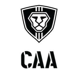 CAA MCKBUS FRONT AND REAR FLIP BACK UP SIGHTS