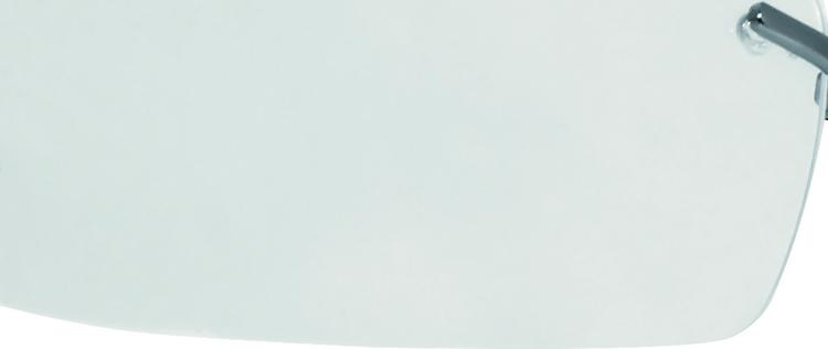 DeltaPlus Skyddsglasögon Salina Clear