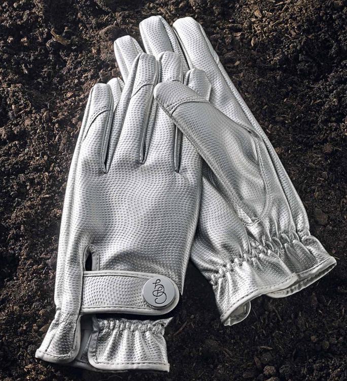 Garden Glove Silverbullet