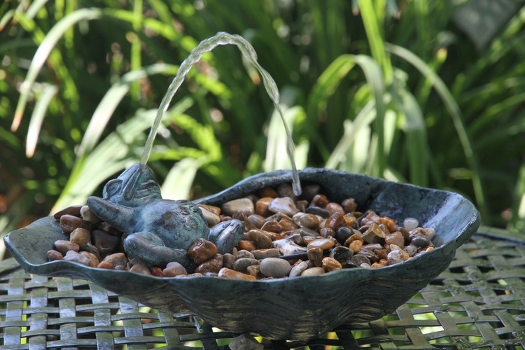 Garden Fountain Lying Frog