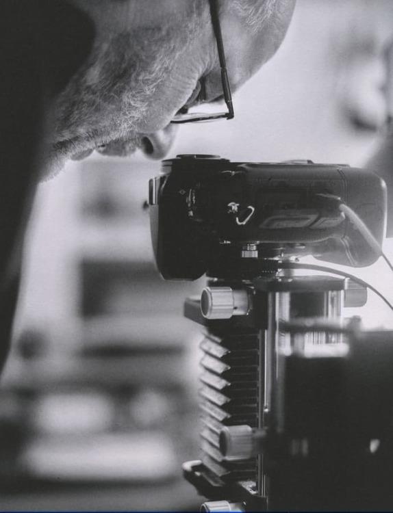 Macro Photography Caligo Atreus 30x40cm