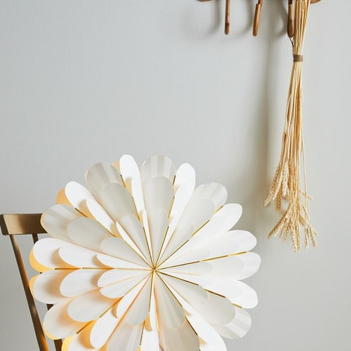 Marigold White Ponsiettia Large 60 cm