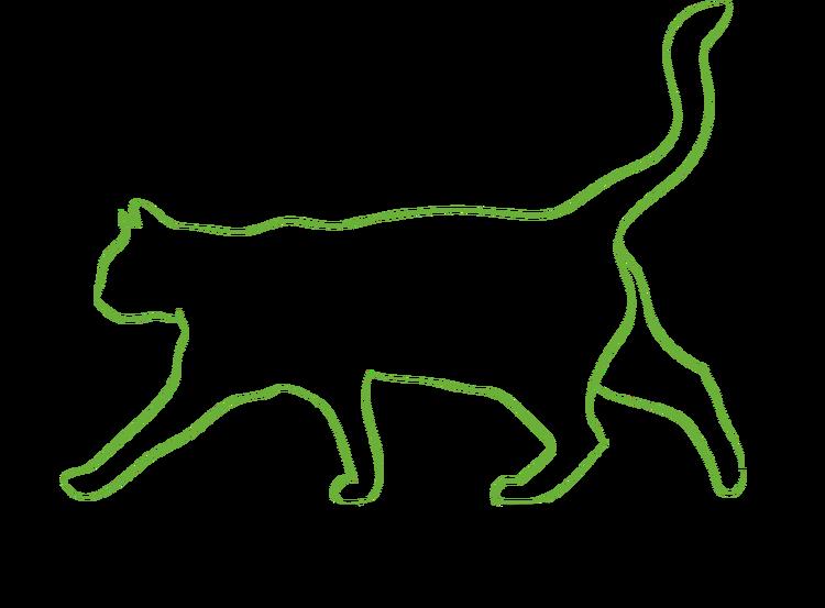Kattpassning med tilläggstjänst 90 + 30 Enskilda gånger