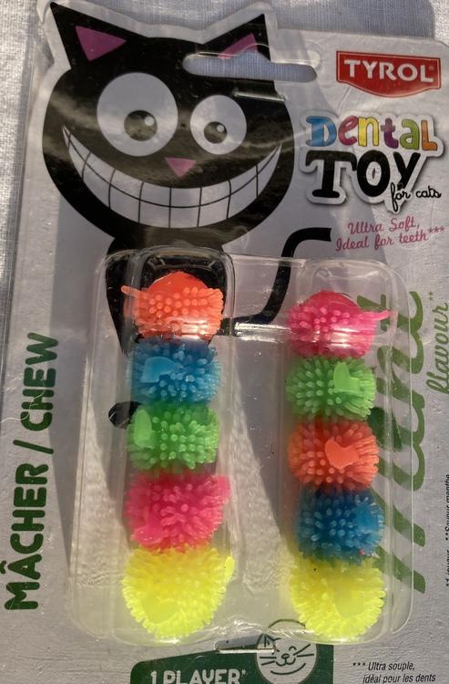 Dental Toy