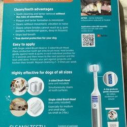 Tandbehandling Underhåll Katt