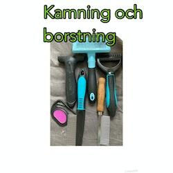 Kamning och borstning