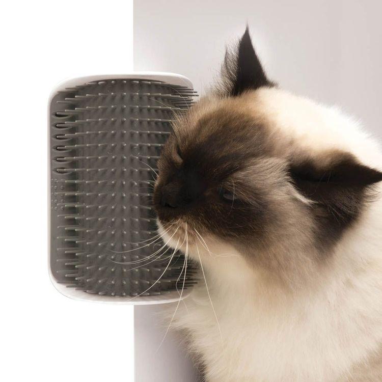 Kattens favorit - Kattborste / kliare för vägg eller dörrkant
