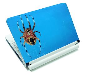 Datorskin - Spindel